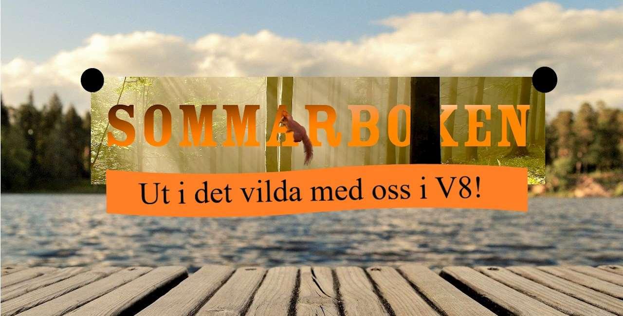 Sommarbokens logotyp i organge text. En orange banner med text. I bakgrunden en brygga och vatten.